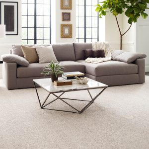 Modern living room with Carprt flooring | Boyer's Floor Covering