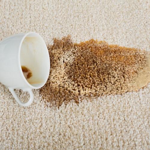 Coffee spill on carpet | Boyer's Floor Covering